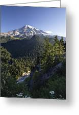 Mount Rainier Surrounded By Forest Greeting Card