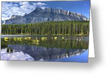 Mount Rundle And Boreal Forest  Greeting Card