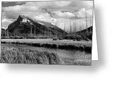 Mount Rundle Banff National Park Greeting Card