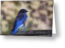 Mountain Bluebird Painterly Greeting Card