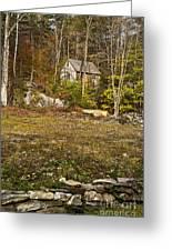 Mountain Cabin Greeting Card by John Greim