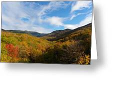 Mountain Foliage And Blue Skies Greeting Card