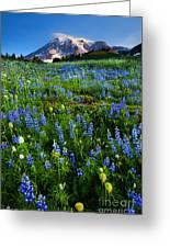 Mountain Garden Greeting Card