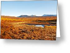Mountain In Autumn Greeting Card by Conny Sjostrom