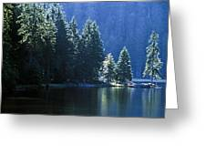 Mountain Lake In Arbersee, Germany Greeting Card