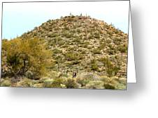 Mountain Of Cactus Greeting Card
