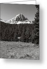 Mountain Peak Above The Tree Line Greeting Card