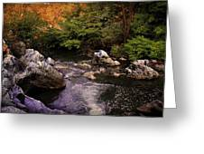 Mountain River With Rocks Greeting Card