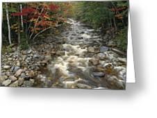 Mountain Stream In Autumn, White Greeting Card