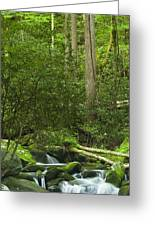 Mountain Stream Panorama Greeting Card by Andrew Soundarajan