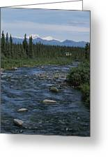 Mountain Stream With Cabin In Evergreen Greeting Card