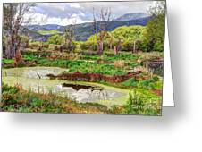 Mountain Valley Marsh - Hdr Greeting Card