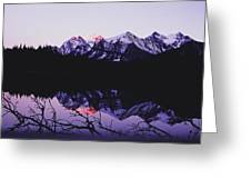 Mountains And Lake At Icefields Parkway Greeting Card