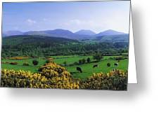 Mourne Mountains, Co Down, Ireland Greeting Card