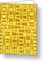 Moveonart Goldenblanket Greeting Card