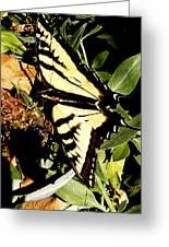 Moveonart Yellowbutterflyfriend Greeting Card