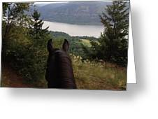 Mr's View Greeting Card