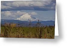 Mt Mclaughlin Springtime Greeting Card