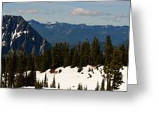 Mt Rainier In June Greeting Card