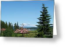 Mt St Helens In The Distance - A Panorama Greeting Card