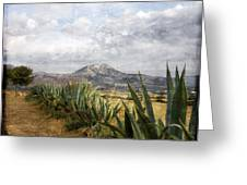 Mt Zeus Greeting Card
