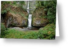 Multnomah Falls - Wide View Greeting Card