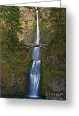 Multnomah Falls 2 Greeting Card