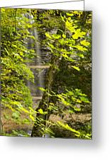 Munising Falls 4 Greeting Card