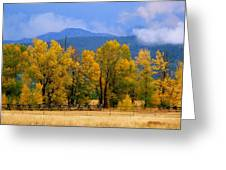 Murmur Of The Cottonwoods Greeting Card