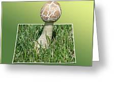 Mushroom 02 Greeting Card