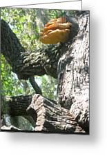 Mushroom Man Greeting Card by Juliana  Blessington