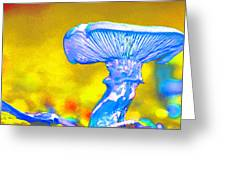 Mushroom Whimsy  Greeting Card
