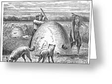 Muskrat Hunting, 1873 Greeting Card