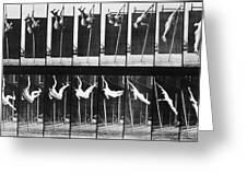 Muybridge: Photography Greeting Card