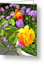 My Beautiful Roses Greeting Card