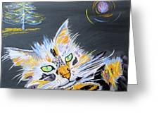 My Calico Cat Wizard Greeting Card
