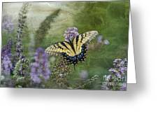 My Mothers Garden - D007041 Greeting Card by Daniel Dempster