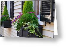 My Tradd Street Window Boxes Greeting Card by Lori Kesten