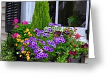 My Window Boxes Late May Greeting Card by Lori Kesten