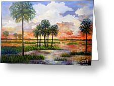 Myakka Sunset Greeting Card