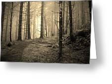 Mystery Path Greeting Card