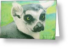 Mystic Seer Of Madagascar Greeting Card
