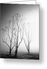 Mystic Trees 1 Greeting Card