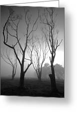 Mystic Trees 2 Greeting Card