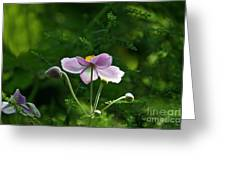 Mystical Moment Greeting Card