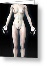 Naked Woman Greeting Card