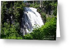 Narada Falls Through The Trees Greeting Card
