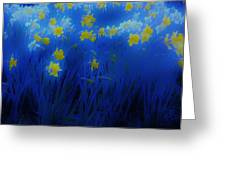 Narcisos Greeting Card by Xoanxo Cespon