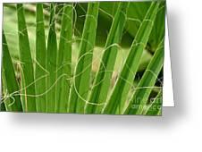 Natural Abstract 12 Greeting Card