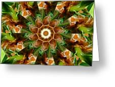 Natural Pinwheel Greeting Card